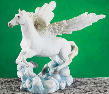 5464 - Medium Pegasus